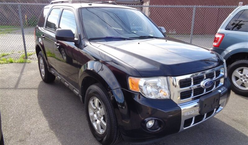 2010 Ford Escape Limited full