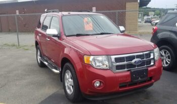 2010 Ford Escape XLT full